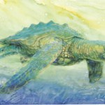 archelon, sea dinosaur