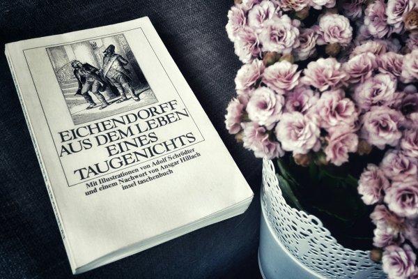 Zwei Jahre Klassiker-Leseliste: Die Bilanz