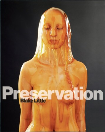 preservation-by-blake-little-cover-580x730