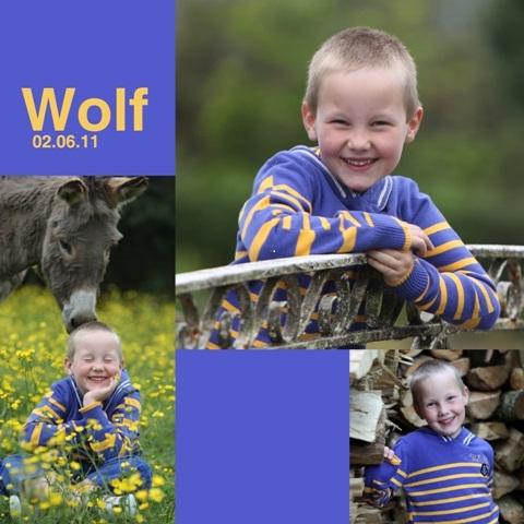 wolf1kopie