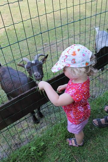 kinderboerderij2