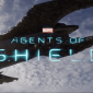 We don't have to say goodbye to our agents just yet - a sixth season is coming!