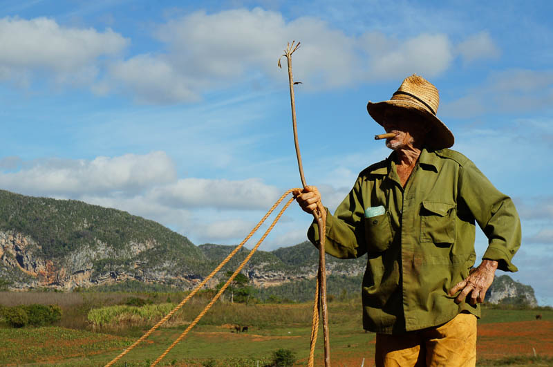 Visiting The Valley of Vinales Cuba