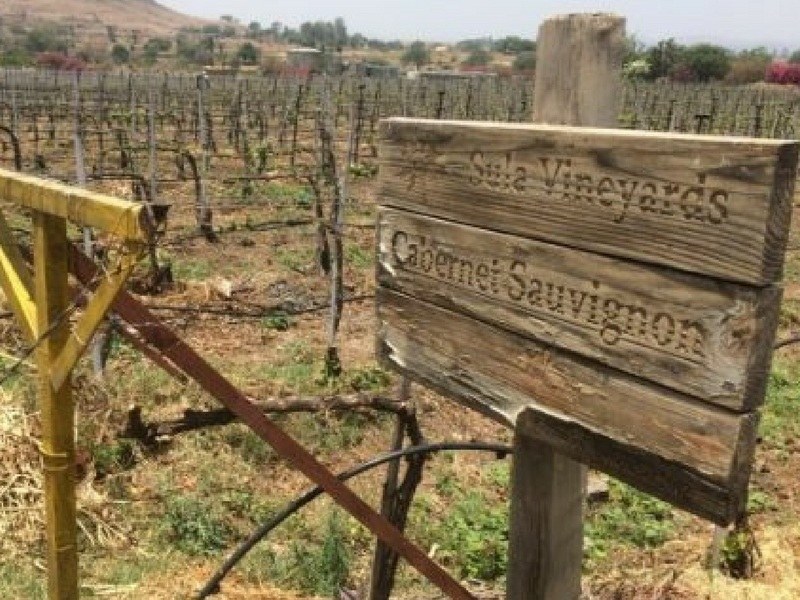 India Wine Tours and Wine Tastings
