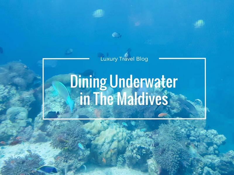 5.8 Restaurant – An Underwater Restaurant In The Maldives