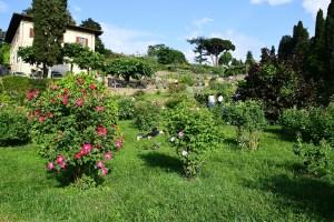 Giardino delle Rose - Florence