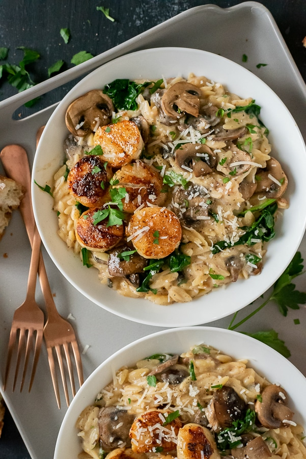 White bowl filled with creamy parmesan mushroom orzo and butter scallops.