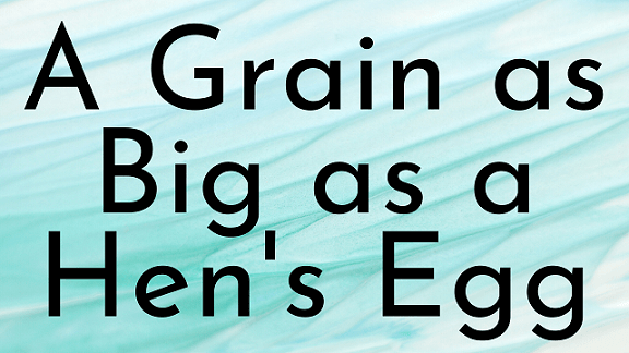 A Grain as Big as a Hen's Egg Questions & Answers