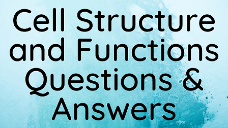 Cell Structure and Functions Questions & Answers