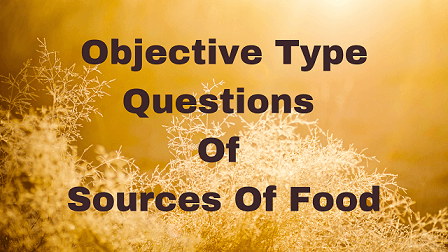 Objective Type Questions Of Sources Of Food