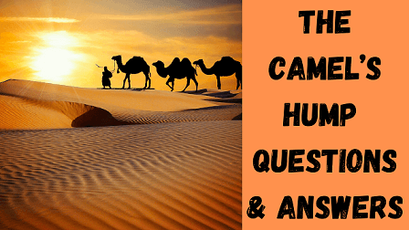 The Camel's Hump Questions & Answers