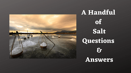 A Handful of Salt Questions & Answers