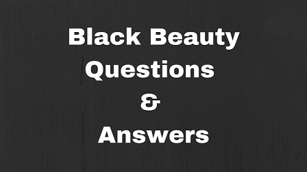 Black Beauty Questions & Answers