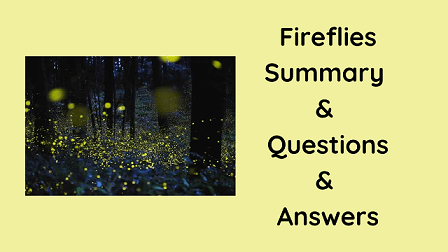 Fireflies Summary & Questions & Answers