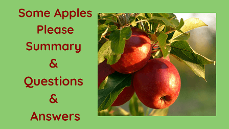 Some Apples Please Summary & Questions & Answers