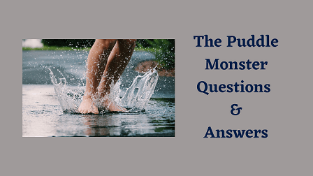 The Puddle Monster Questions & Answers
