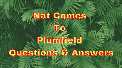 Nat Comes To Plumfield Questions & Answers