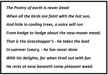 On The Grasshopper and Cricket Stanza Wise Summary