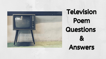 Television Poem Questions & Answers