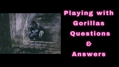 Playing with Gorillas Questions & Answers
