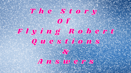 The Story Of Flying Robert Questions & Answers