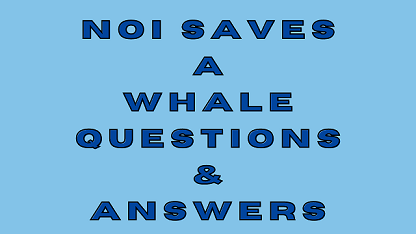 Noi Saves a Whale Questions & Answers