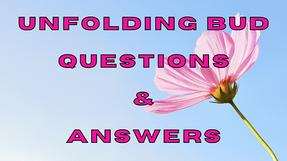 Unfolding Bud Questions & Answers
