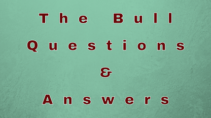 The Bull Questions & Answers