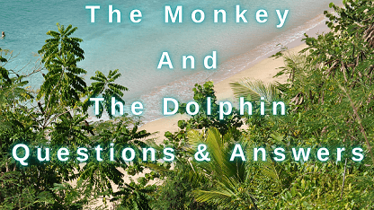 The Monkey and The Dolphin Questions & Answers