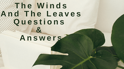 The Winds and The Leaves Questions & Answers