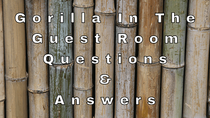 Gorilla In The Guest Room Questions & Answers