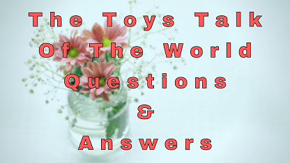 The Toys Talk Of The World Questions & Answers