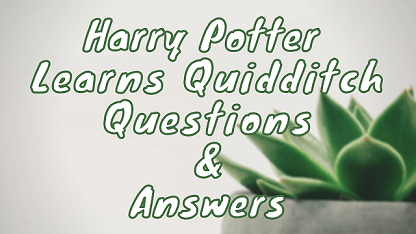 Harry Potter Learns Quidditch Questions & Answers