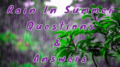Rain In Summer Questions & Answers