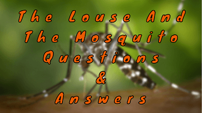 The Louse and The Mosquito Questions & Answers