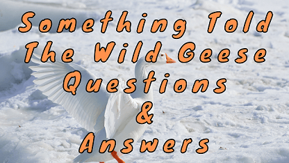 Something Told The Wild Geese Questions & Answers