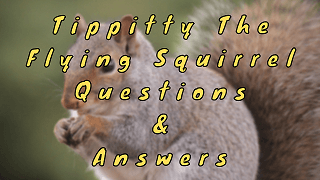 Tippitty The Flying Squirrel Questions & Answers