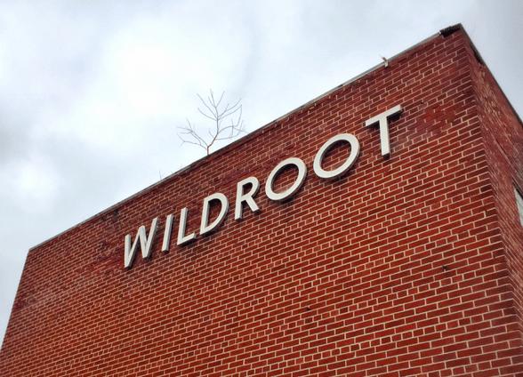 Wildroot_484468