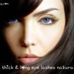 8 natural ways to get long and thick eyelashes