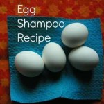 egg-shampoo