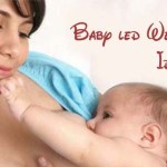 How to stop breastfeeding? Baby led weaning ideas