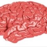 13 Best Ways To Boost Your Brainpower