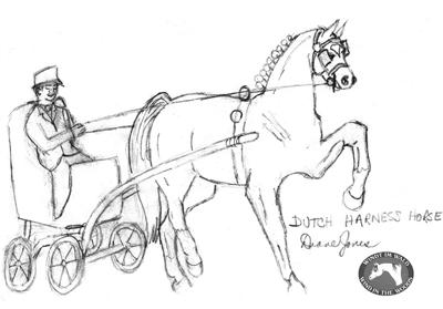 Pony Harness Wagon Pony Dressage Wiring Diagram ~ Odicis