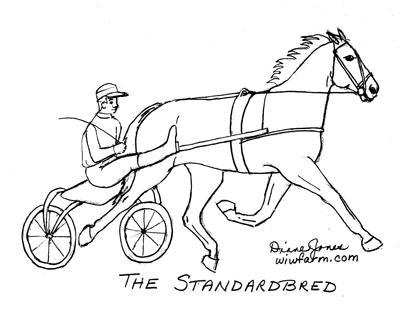 THE STANDARDBRED
