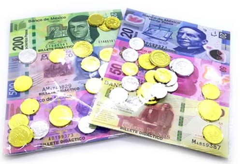 Billetes con Monedas Metalizadas – juegos y juguetes didácticos