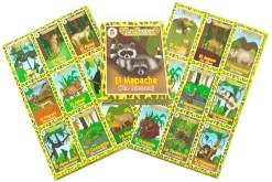 Lotería Didáctica Animales de la Selva - Wiwi Loterías de Mayoreo