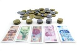 Dinero Didáctico Monedas con Billetes – Wiwi didácticos de mayoreo