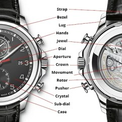 Watch Movement Diagram Wiring For Seven Way Trailer Plug Of A Timepiece Anatomy Wixon Jewelers