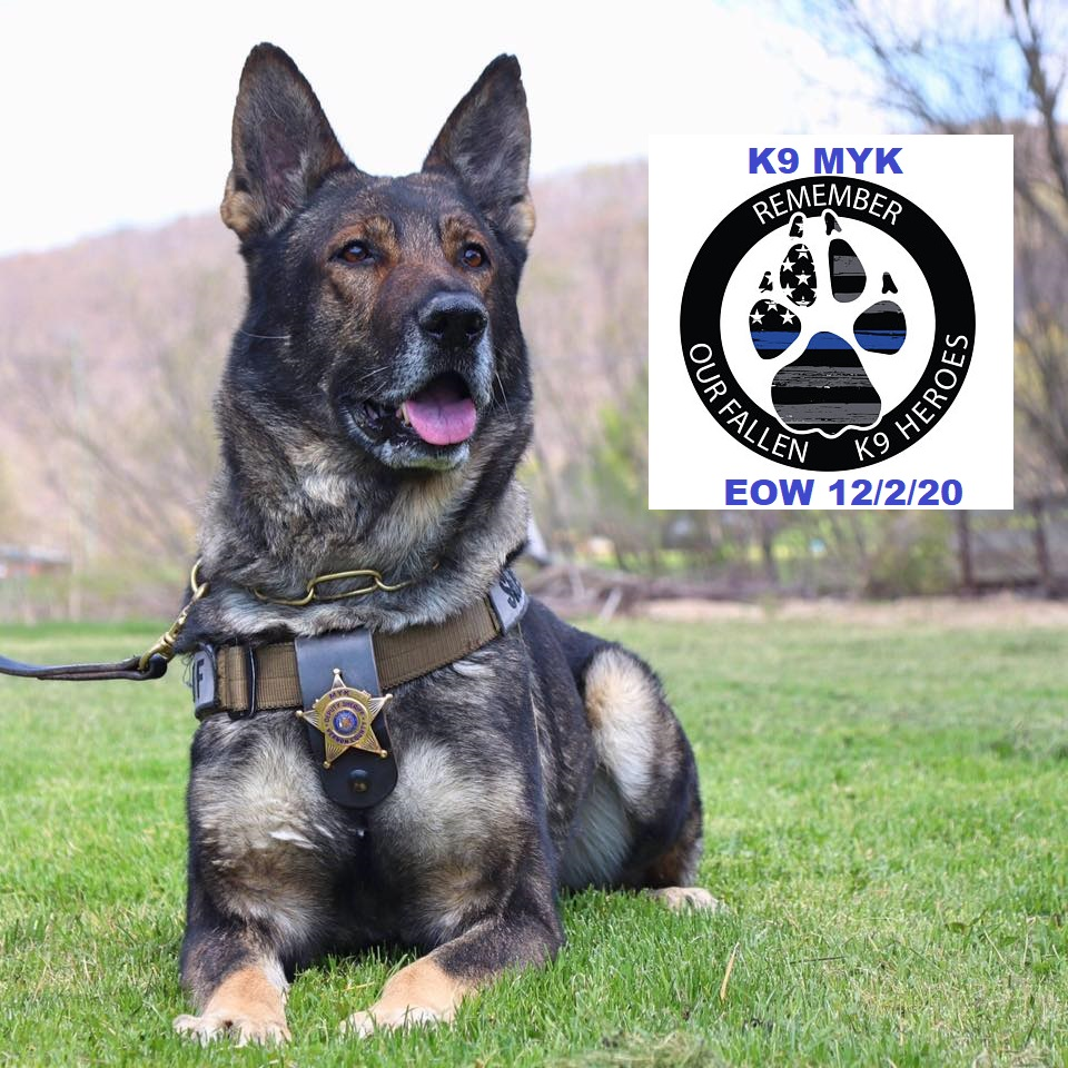 Vernon Co. Sheriff's Office mourns the loss of K-9 Myk ...