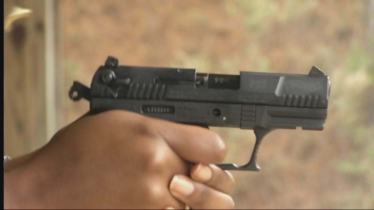GUN INITIATIVE_251559